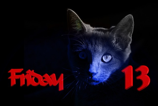 Black cat and friday 13th