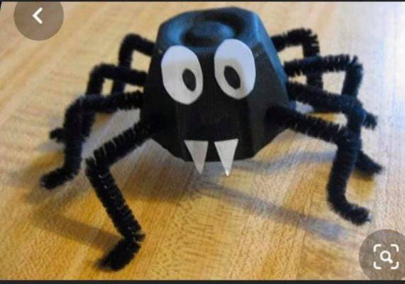 egg box spider