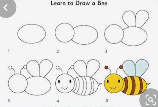 how to draw honeybee